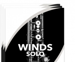 木管组独奏Sonex Audio Woodwinds Solo KONTAKT