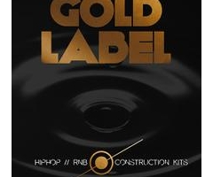Hip Hop and RnB 素材Fish Audio Gold Label Hip Hop and RnB MULTiFORMAT